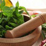สมุนไพรไทย ดูแลสุขภาพ